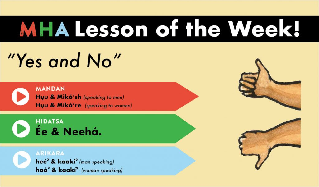 lesson_4_yes_and_no